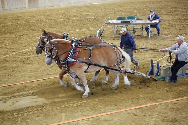 Horse Pulling 2015